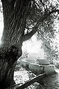 エシディン墓