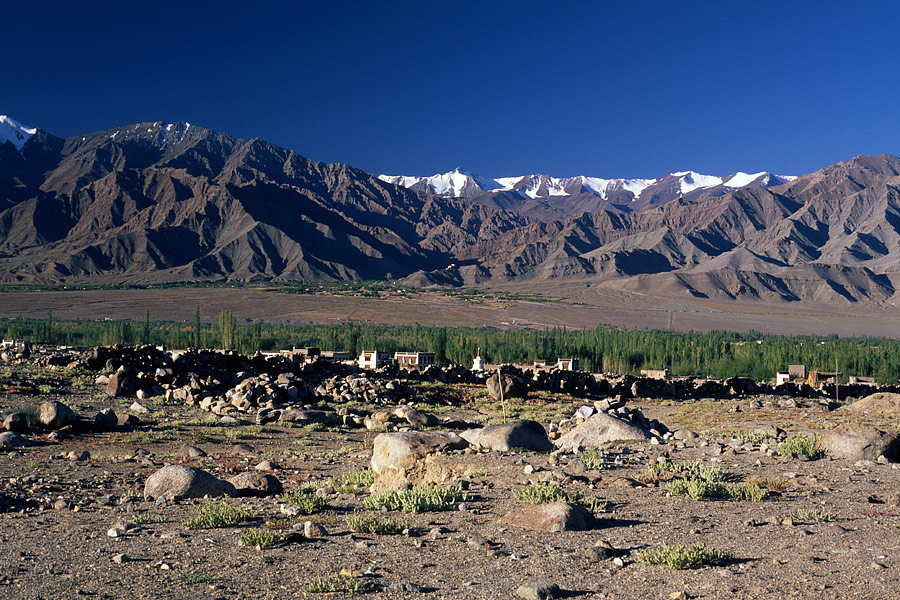 Tikse, Ladakh, India