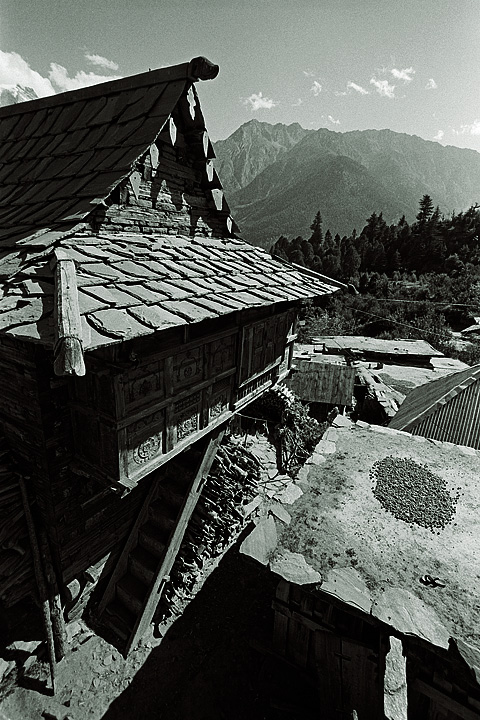 at Kalpa, India